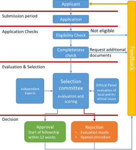 evaluation-flowchart